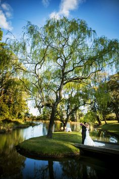 Wind in the Willows Gibraltar Hotel, Willow Tree, Hotel Spa, Highlands, Acre, Southern, Wedding Ideas, Island, Weddings