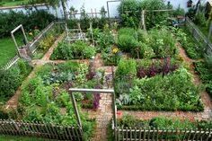 Beautiful kitchen garden with brick walkways