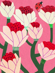 monika forsberg flowers on pink