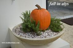 fall in alys