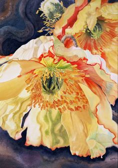 """Golden Poppies,watercolour, 29x21"""" These are Iceland Poppies. Marney Ward"""