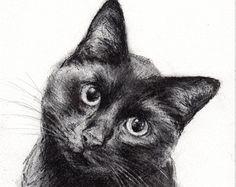 #Cat. Charcoal Drawing. Disegno a carboncino di un gatto di animale di BelindaElliottArt