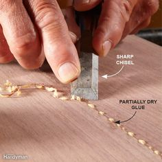 Using just any type of wood will not work at all. After all, you have to know some things about your wood even before you start building. - diy with wood , DIY - With WOOD , DIY with wood and such Woodworking Glue, Woodworking For Kids, Woodworking Techniques, Woodworking Projects, How To Remove Glue, How To Make, Glues And Adhesives, Garage Workshop Plans, Workshop Ideas