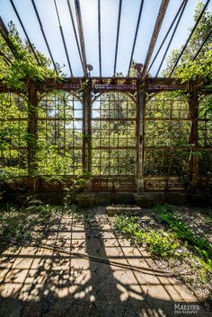 Abandoned greenhouse reference for exterior garden fence style