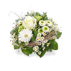 Kos - Ein frischer Blumengruß der gute Laune schenkt!