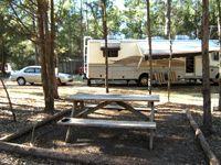 Mossy Oaks RV Park And Campground Jesup GA Passport America Campgrounds