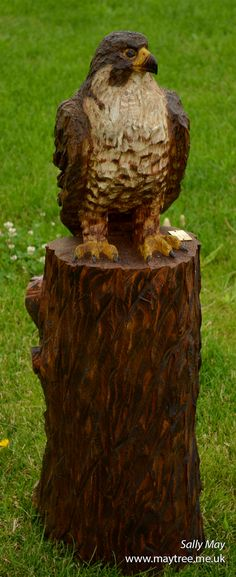 Peregrine Falcon Chainsaw sculpture by Sally May
