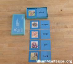 The Montessori Blue Series for Reading - trilliummontessori.org — trilliummontessori.org