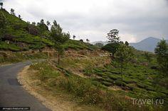 Дорога из Варкалы до Муннара - столицы чайных плантаций Южной Индии