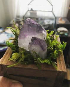 Decorating Your Meditation Room - The Meditation Tree Crystals Minerals, Rocks And Minerals, Crystals And Gemstones, Stones And Crystals, Feng Shui, Pierre Rose, Displaying Crystals, Deco Nature, Crystal Garden