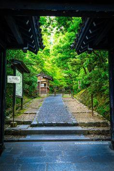 shinryoku at J^jakukôji temple, Arashiyama Kyoto (@japanimpression)   Twitter