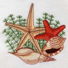 Seashells 3, 5 - 2 Sizes!   What's New   Machine Embroidery Designs   SWAKembroidery.com Ace Points Embroidery