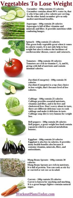 The Female Training Bible: Everything You Need To Get The Sexy Body You Desire!, The Female Training Bible: Everything You Need To Get The Sexy Body You Desire! 10 Vegetables To Lose Weight 10 Vegetables To Lose Weight. Healthy Tips, Healthy Snacks, Healthy Recipes, Get Healthy, Diet Recipes, Stop Eating, Clean Eating, Fat Loss Diet, Healthy Lifestyle