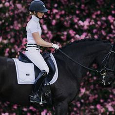 #equestrian #equestrianstyle #horse #horses Equestrian Stockholm coming soon to Equestrian Performance!