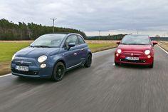 Fiat 500 #fiat500