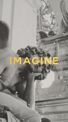 IMAG/INE