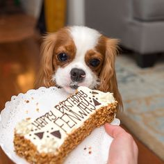 Mmmm...cake! It's my birthday party! ♥