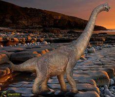 Brachiosaurus Altithorax. Papo XL Espectacular reproducción del Braquiosaurio de la marca Papo en su versión XL, Un dinosaurio de juguete de gran tamaño: 40 cm x 32 cm (Escala 1:55 approx.) El mas chulo de todos los que he visto