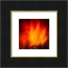Firedance Framed Print By Lynne  Douglas