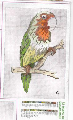 perruche * point de croix * cross stitch parakeet Cross Stitch Bird, Insects, Bee, Birds, Animals, Parakeet, Embroidery, Honey Bees, Animales