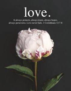 Love. It always protects, always trusts, always hopes , always perseveres. Love never fails. 1 Corinthians 13:7-8