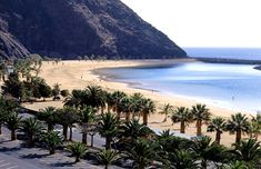 Tenerife - Great beach vacation in the Canary Islands