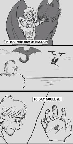 My feelings! Hiccup and Toothless