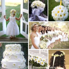 Daisy Wedding Inspiration