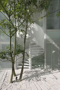 The Park House, Formwerkz Architects