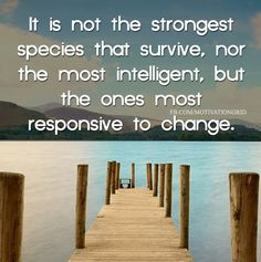 It is not the strongest species that survive, nor the most intelligent, but the ones most responsive to change.