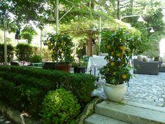 Charming garden in Montecatini Terme