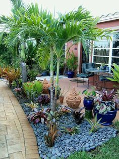 If you are working with the best backyard pool landscaping ideas there are lot of choices. You need to look into your budget for backyard landscaping ideas Tropical Backyard Landscaping, Florida Landscaping, Florida Gardening, Front Yard Landscaping, Backyard Patio, Landscaping Ideas, Succulent Landscaping, Patio Ideas, Inexpensive Landscaping