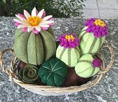 Cactus composition of the felt in the wicker basket, composition … - Modern Dyi Flowers, Handmade Flowers, Felt Flowers, Cactus Craft, Cactus Decor, Cactus Flower, Flower Pots, Flower Bookey, Flower Film
