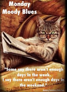 Moody Monday Blues: The weekends are way too short! Have a great week everyone. Follow us on our FanPage: Hamburg Veterinary Clinic for more chuckles, informative tips on your pets and educational information. Come be a part of a community that SHAREs their love of animals ...