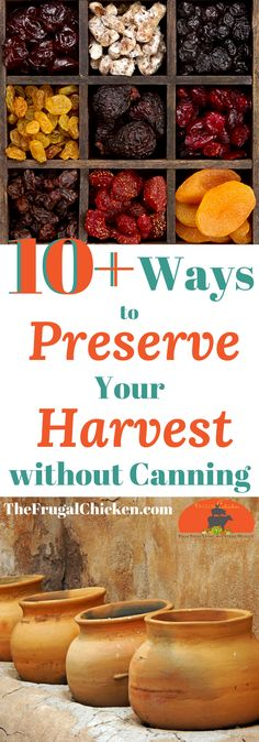 Have a huge harvest & aren't sure how you'll can it all? No worries - here's more than 10 ways to preserve your harvest without water bath or pressure canning!