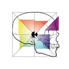 Divin KRN (by #krane) #crane #skull #illustration #design #montpellier #mtp #goldenratio #1618 #nombredor Montpellier, Golden Ratio, Crane, Playing Cards, Skull Illustration, Sugar, Design, Skull, Playing Card Games