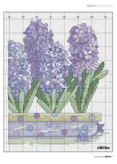 Heavenly Hyacinths Pg 3 of 4
