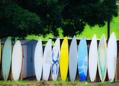 Surf board fence...#gohawaii