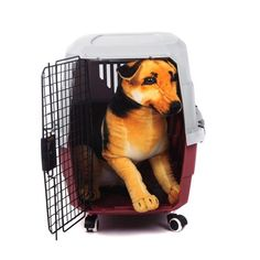 5 Best Pet Carriers And Tips For Safer Airline Cargo Flights Flying With Pets, Airline Pet Carrier, Airline Travel, Pet Carriers, Crates, Your Dog, Dogs, Air Travel, Doggies