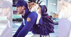 犬は心から私たちを信頼しているとわかる画像12選|ペットフィルム -犬・猫・ペットの画像・動画まとめ petfilm.biz