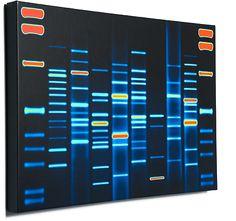 DNA Art by DNA11