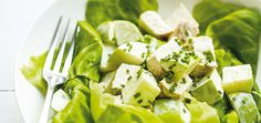 Curried chicken apple salad  30 ml (2 tablespoons) mayonnaise  30 ml (2 tablespoons) sour cream  30 ml (2 tablespoons) chopped fresh chives (or green onion)  10 ml (2 teaspoons) lemon juice  2 Curried chicken breast halves, cooked, cooled, and cubed (see recipe)  1 Granny Smith apple, cored and cubed  1 liter (4 cups) shredded Boston lettuce  Salt and pepper