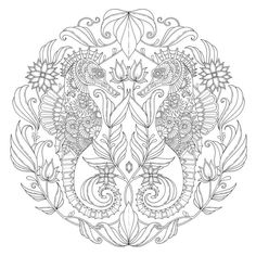 Lost Ocean Coloring Book By Johanna Basford