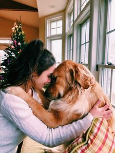 Golden Retriever Dog Training Tips. - It can be hard to resist giving a dog — yours or someone else's — a hug. If your dog enjoys being physically close to you, a hug can make you both feel happy and loved. But not all dogs like hugs. Cute Baby Animals, Animals And Pets, Funny Animals, Funny Dogs, Surprised Dog, Love My Dog, Cute Dogs And Puppies, Doggies, Retriever Puppy
