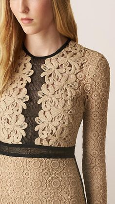 Nude Lace and Mesh Panel Cotton Blend Dress - Image 3