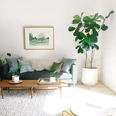 A mid century inspired, bright and airy living room featuring the Tate Estate Sofa special order, photo via Living Room Plants, Boho Living Room, Living Room Decor, Bohemian Living, Modern Bohemian, Interior Exterior, Living Room Designs, Living Room Furniture, Furniture Design