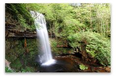 Ireland: Glencar Waterfall just over the Knocknarea Mountain. 8 miles north of Sligo town and 5 miles south of Manorhamilton. 50 foot drop.