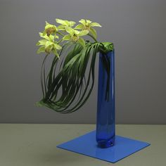 Leaf with Cymbidium orchid