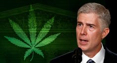 President Trump's Supreme Court nominee, Neil Gorsuch, is a native of Colorado, the first state to legalize marijuana for recreational use.  Gorsuch, a conservative federal judge on the 10th U.S. Circuit Court of Appeals in Denver, has not voiced his views on legal weed — at least not publicly.
