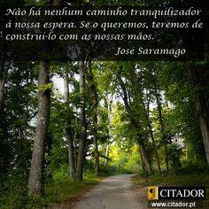 Construir o Nosso Caminho - José de Sousa Saramago
